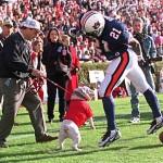 UGA Football: Smart, Bulldogs Preview Auburn Game