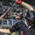 UGA Baseball: Bulldogs Pile on 12 Runs Against Tigers