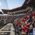 UGA Women's Softball: No. 19 Georgia Hosts Georgia Tech