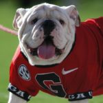 UGA Football: Check Out What's Happening at Fan Day Saturday
