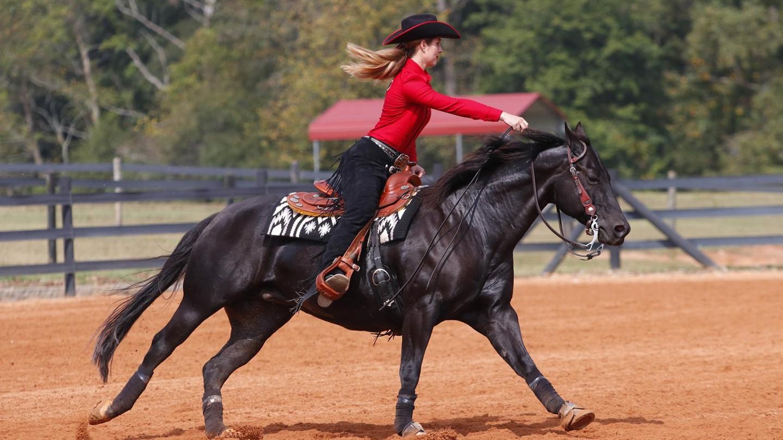 Uga Women S Equestrian 1 Georgia Tops 6 Tcu 12 6
