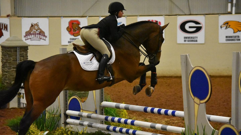 Uga Women S Equestrian Georgia Sweeps Fences On Day One