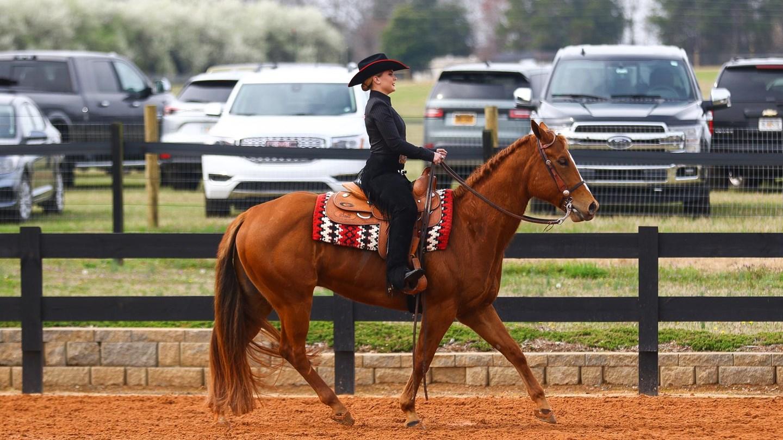 Uga Women S Equestrian Georgia Travels To 1 Auburn